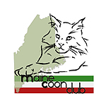 Maine Coon Club